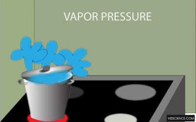 What is vapor pressure