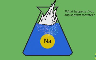 Na + H2O Sodium and Water reacts to form a hydroxide