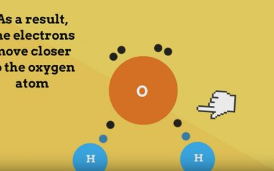 Why is water a polar molecule and also a bent molecule?