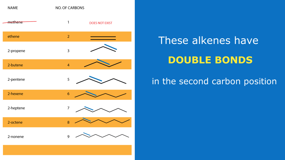 alkenes with second position double bonds - organic chemistry