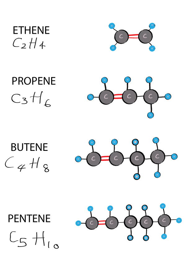alkenes with double bonds organic chemistry