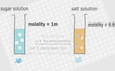 The effects of solutes and concentrations on colligative properties of solutions